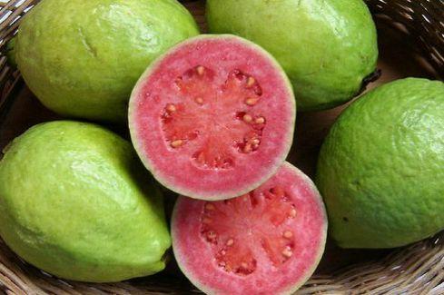 fructe-exotice-psidium-guajava