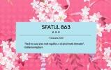 sfatul863